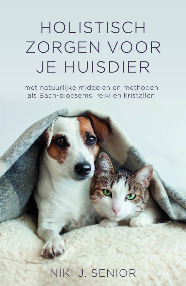 Dutch Book Cover