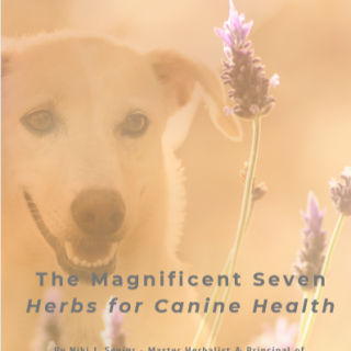 The Magnificent Seven Herbs For Dogs Front Cover