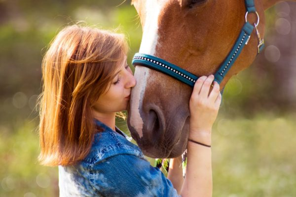Horse 3385776 1920